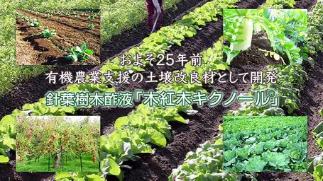 およそ25年前 有機農業支援の土壌改良材として開発 針葉樹木酢液「木紅木キクノール」