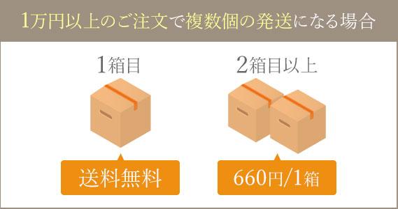 1万円以上のご注文で